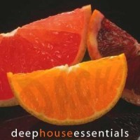 DJ Dacha - Deep House Essentials - Live